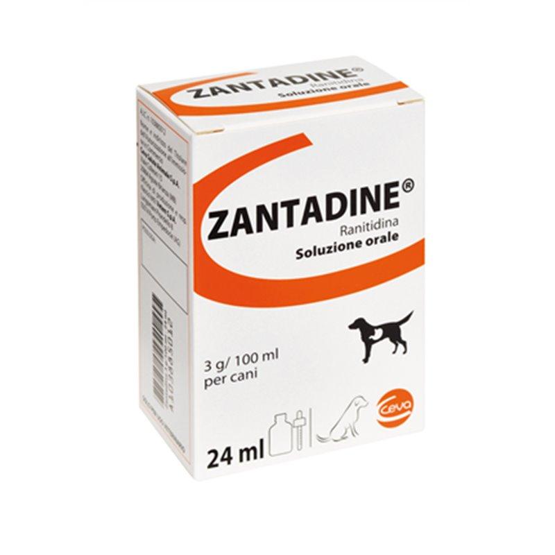 Zantadine flacone 24ml 3g 100ml cani farmaetnea for Antinfiammatorio cane